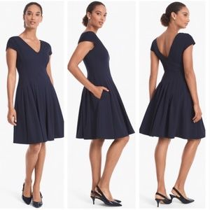 WHBM Seamed V-Neck Fit-and-Flare Dress 6